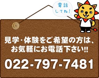 見学・体験をご希望の方は、お気軽にお電話ください!!022-797-7481