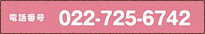 電話番号022-725-6742