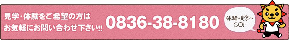 見学・体験をご希望の方はお気軽にお問い合わせ下さい!!0836-38-8180